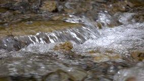 Close up da água que supera a corredeira rochosa da paisagem da montanha video estoque