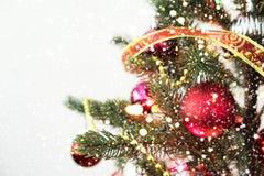 Close-up da árvore de Natal com ornamento Foto de Stock Royalty Free