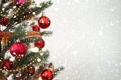 Close-up da árvore de Natal com ornamento, Fotografia de Stock Royalty Free