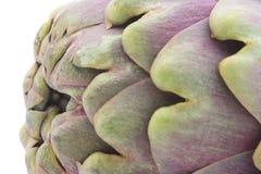 Close-up da alcachofra Imagem de Stock Royalty Free