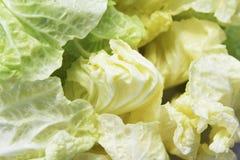 Close-up da alface de iceberg Imagem de Stock Royalty Free