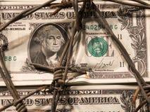 Close up da cédula do dólar com arame farpado Fotografia de Stock