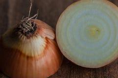 Close-up da cebola do jardim imagens de stock