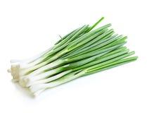 Close-up da cebola verde isolado em um fundo branco Fotos de Stock Royalty Free