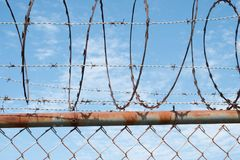 Close up da cerca de Barbwire no céu - cerca de fio da farpa Foto de Stock Royalty Free