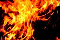 Close up da chama do fogo Foto de Stock