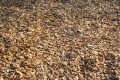 Close up da coberta do trajeto da microplaqueta de madeira Imagens de Stock