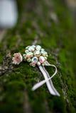 Close-up da colar bonita abandonada na terra da floresta Imagens de Stock