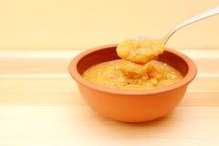 Close up da colher de lentilha entusiasta e da sopa vegetal Imagem de Stock