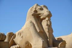 Close-up da esfinge de Karnak fotografia de stock royalty free