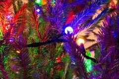 Close-up da festão em uma árvore de Natal Foto de Stock