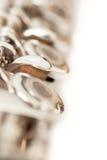 Close up da flauta das válvulas do fragmento Imagem de Stock