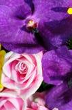 Close-up da flor de Rosa em um ramalhete Foto de Stock Royalty Free