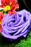 Close-up da flor de Rosa em um ramalhete Fotografia de Stock