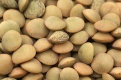 Close-up da grão da lentilha Imagem de Stock Royalty Free