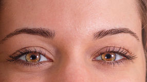 Close-up da jovem mulher com olhos brilhantes Imagem de Stock Royalty Free