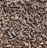 Close-up da lenha da pilha slivers Microplaquetas da textura fotografia de stock royalty free