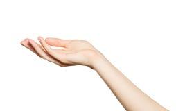 Close-up da mão da mulher bonita, palma acima Fotos de Stock