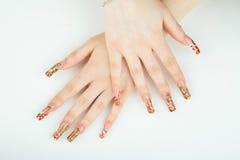 Close-up da mão da mulher com tratamento de mãos bonito no fundo branco Foto de Stock Royalty Free