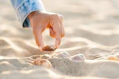 Close up da mão da mulher que pegara conchas do mar na praia branca da areia no por do sol Fotos de Stock