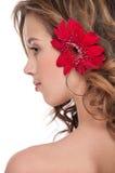 Close-up da menina bonita com a flor vermelha do áster Imagens de Stock Royalty Free