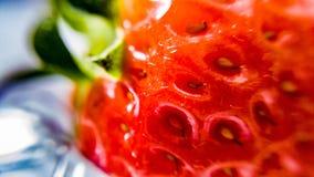 Close up 1 da morango Fotografia de Stock Royalty Free