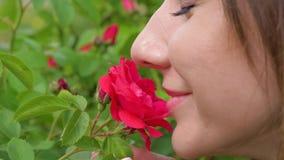 Close up da mulher caucasiano que aspira a rosa do vermelho e que aprecia o cheiro filme
