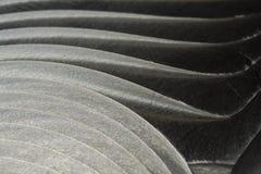 Close-up da parte plana de aço inoxidável da cor cinzenta realística industrial no foco parcial após o CNC industrial que distrib fotos de stock