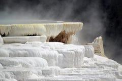 Close up da parte superior da mola amarela em Mammoth Hot Springs fotografia de stock