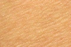 Close-up da pele Fotografia de Stock