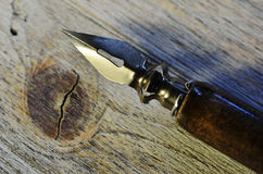 Close up da pena de fonte em de madeira Imagens de Stock