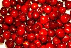 Close-up da pilha de cerejas maduras Fundo maduro das cerejas Fotografia de Stock Royalty Free