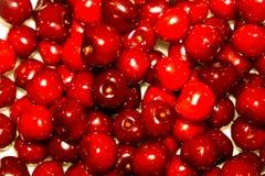 Close-up da pilha de cerejas maduras Fundo maduro das cerejas Imagens de Stock Royalty Free