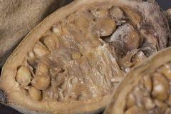 Close up da polpa do fruto de Genipapo Foto de Stock