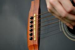 Close up da ponte da guitarra Foto de Stock