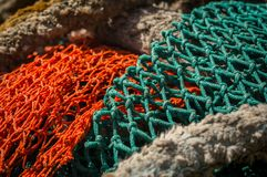 Close up da rede colorida dos peixes imagens de stock royalty free