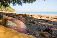 Close up da rocha vermelha colorida no Sandy Beach perto de darwin imagens de stock