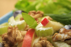 Close-up da salada de Waldorf Imagens de Stock Royalty Free