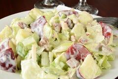 Close up da salada de Waldorf Imagem de Stock