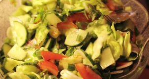 Close up da salada vegetal Almoço fresco vídeos de arquivo