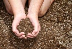 Close-up da sujeira da terra arrendada da criança Imagem de Stock