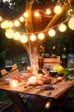 Close up da tabela com aperitivos e vinho no jardim iluminado foto de stock