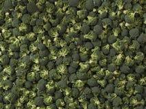 Close up da textura dos brócolis para algumas ideias Conceito dos legumes frescos Fotografia de Stock Royalty Free