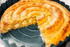 Close up da torta do sopro com queijo fotos de stock