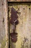 Close up da trava e do fechamento oxidados velhos e clássicos de porta na porta de madeira fotos de stock royalty free