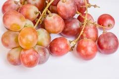 Close-up da uva vermelha imagem de stock royalty free