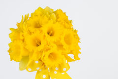 Close up of daffodil bouquet Royalty Free Stock Photography