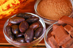 Close up of a dark dry cocoa bean, pieces of chocolate and powdered cocoa in crystal bowls Royalty Free Stock Photos