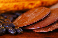Close up of a dark dry cocoa bean with some pieces of dark chocoloate over a wooden background.  Stock Image