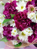 Close-up dark red and white florals. Stock Images